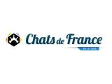 Du paradina's cats