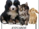 Anigarde Service pour animaux à domicile