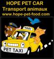 Hope pet car