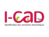 I-Cad
