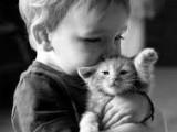 Communiquer avec son chat