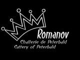 RomanovCats