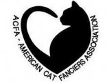 American cat fanciers association