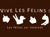 Chatsdumonde souhaite la bienvenue à Vivelesfelins !