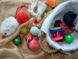 Jouets pour chat : stimuler son chat avec le jeu
