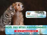 Pour Noël, un week-end d'adoption pour les chiens et les chats à Paris