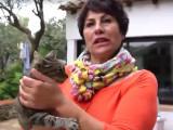 Gloria et ses chats, un rayon de soleil au cœur de l'hiver