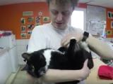 Norman vous présente Merlin, son nouveau chat
