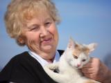 10 races de chats pour les personnes âgées