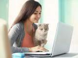 Les assurances pour chats : assurer son chat