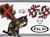 Allergie aux chats, c'est quoi?
