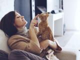 Avoir un chien ou un chat vous rendrait-il irrésistible ?