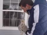 Une famille américaine sauve un chaton du froid en plein hiver