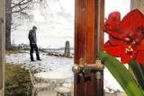 Suisse - Dressé pour la chasse, un chien sans surveillance tue un chat
