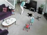 Le chat agresse la babysitter