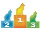10 records autour des chats
