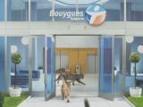 La publicité pour Bouygues Telecom