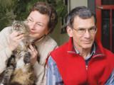 Garde du chat en cas de divorce : que dit la loi ?