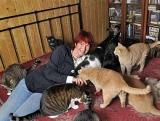 Suisse -  en 2011 une nouvelle loi protégera les chats