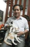 Viet-Nam : Le chat, le meilleur ami des paysans
