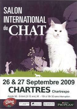 14 me salon international du chat de chartres eure loir - Salon de chat gratuit ...