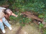 THIERS (63) Coup de griffe de l'association SOS chats