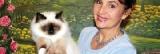 Glamour, jeune chat de l'Ain, champion du monde des félins