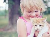 Eczéma : la présence d'un chat accroîtrait les risques chez les enfants plus fragiles