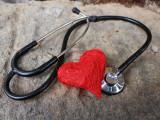L'insuffisance cardiaque chez le chat