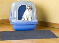 Où mettre le bac à litière de mon chat ?