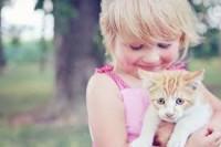 La relation entre le jeune enfant et le chat