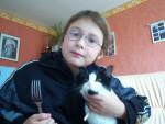 Chat chat domestique europeen,poils court - Européen  (0 mois)