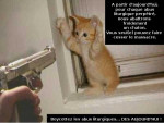 Chat oh les mains chaton !.jpg -   (0 mois)