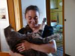 Chat goutière de chez goutière -   (0 mois)