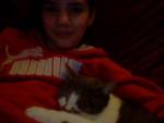 Chat chat de goutière souris -   (0 mois)