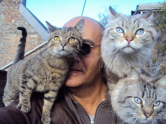 Chat Cowboy, Léo et Max -   (0 mois)